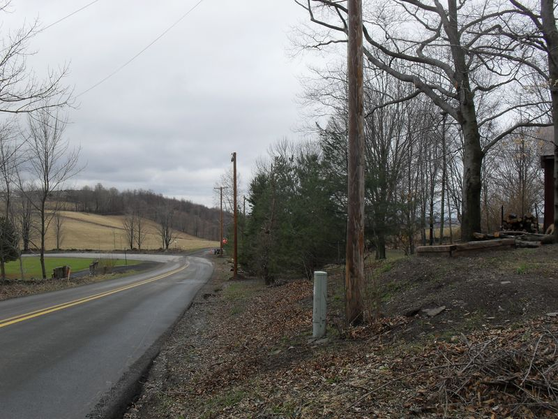 March 29, 2010 A Forest of Telephone Poles - View from the farm